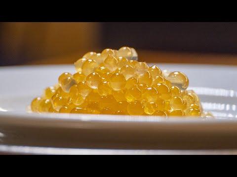 Икра из мёда Сделать её сможет каждый Молекулярная кухня от Василия Емельяненко Сферификация