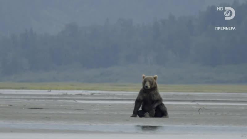 01 Джереми Уэйд. Тёмные воды. В поисках речных королей Аляски