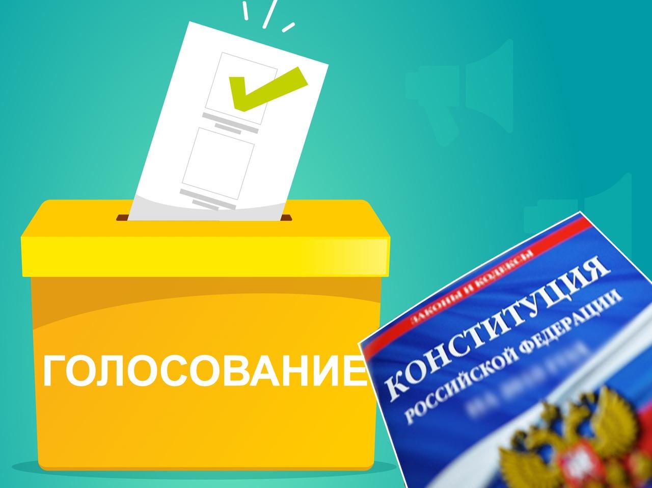 Россияне смогут выбрать удобное для себя время голосования на дому