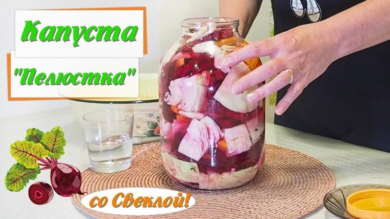 Капуста Пелюстка со Свеклой Классический Быстрый Рецепт pickled cabbage with beets