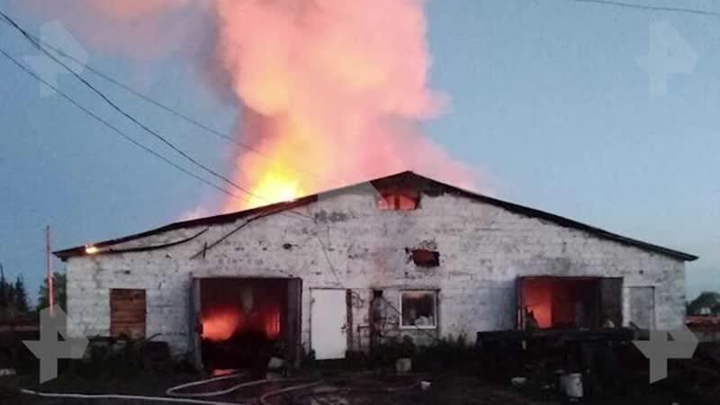 Крупный пожар охватил ферму в Свердловской области