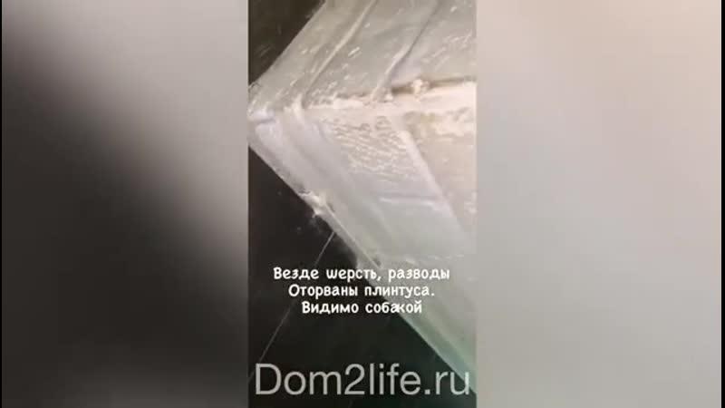 Квартиранты разгромили двушку Алианы Устиненко