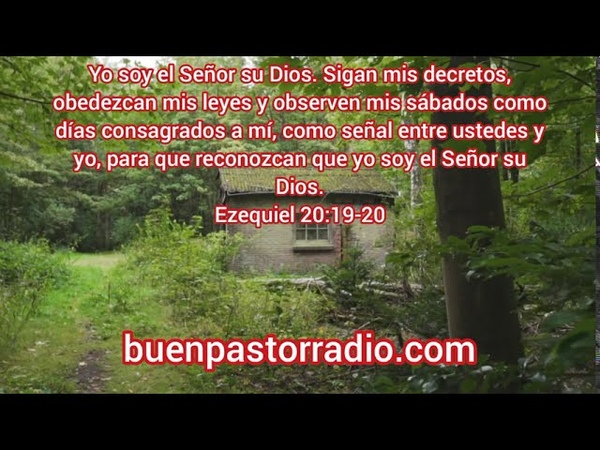 Versículo mas poderoso de la biblia 20 de septiembre de 2020 - textos bíblicos cristianos