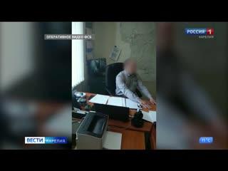Следственный комитет возбудил пять уголовных дел в отношении сотрудников Калевальского и Олонецкого лесничеств