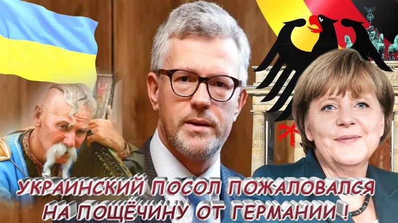 ПОШЛА ЖАРА Украинский посол пожаловался на пощечину от Германии
