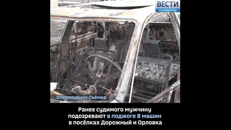 В Калининградской области полиция по горячим следам задержала пиромана