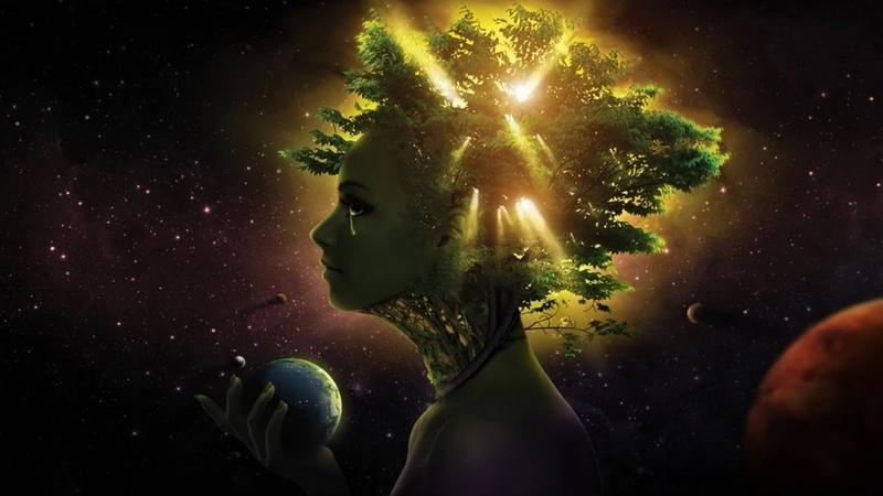 Alan Watts Why Do We Keep Fighting Nature