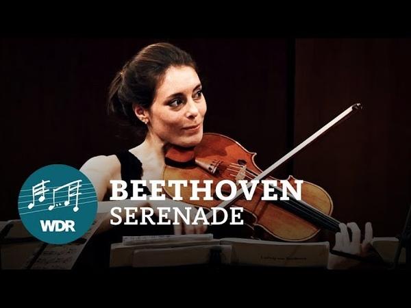 Ludwig van Beethoven Serenade D Dur op 8 WDR Sinfonieorchester