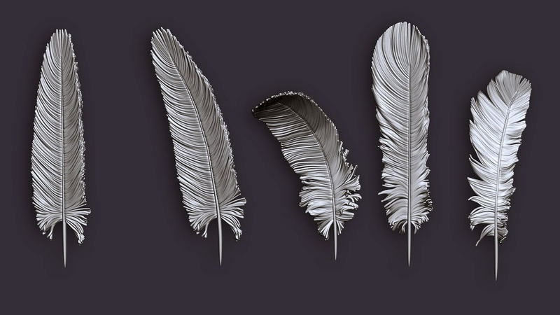 Zbrush Tutorial Timelapse Feather from Fibermesh to 3D Printable Mesh