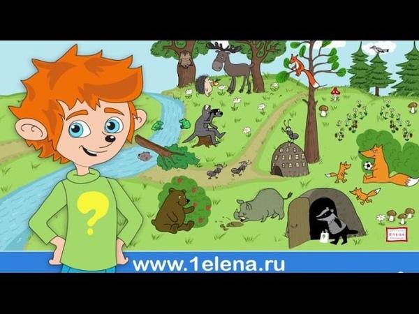 Детский мультфильм с Чевостиком Дикие животные (Серия 2)