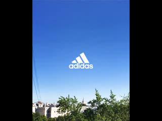 adidas x Психо Daily /// гид по беговым тренировкам