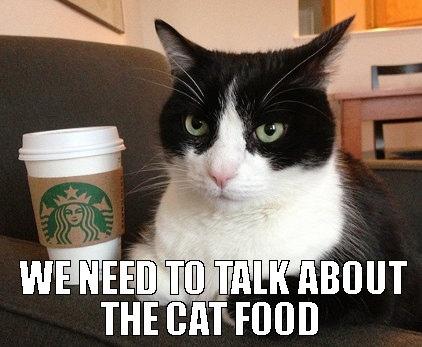"""Нам нужно поговорить о кошачьей еде (дословно - """"кот еда"""", да)"""