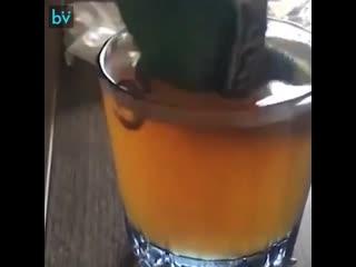 Отмечай того кто так же пьет
