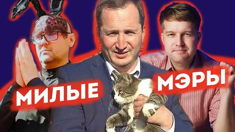 Голубые ели экс мэра Архангельска советник по счастью в мэрии Зверево