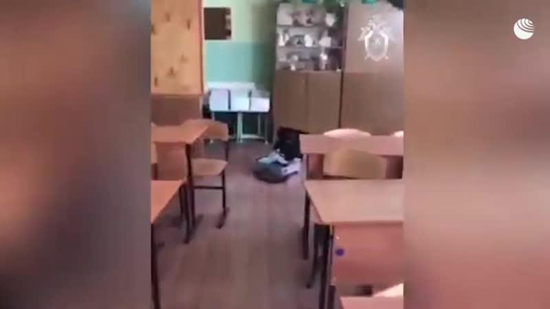 В Ульяновске школьник ранил учительницу кухонным ножом