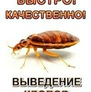 Фотоальбом Максима Τимофеева