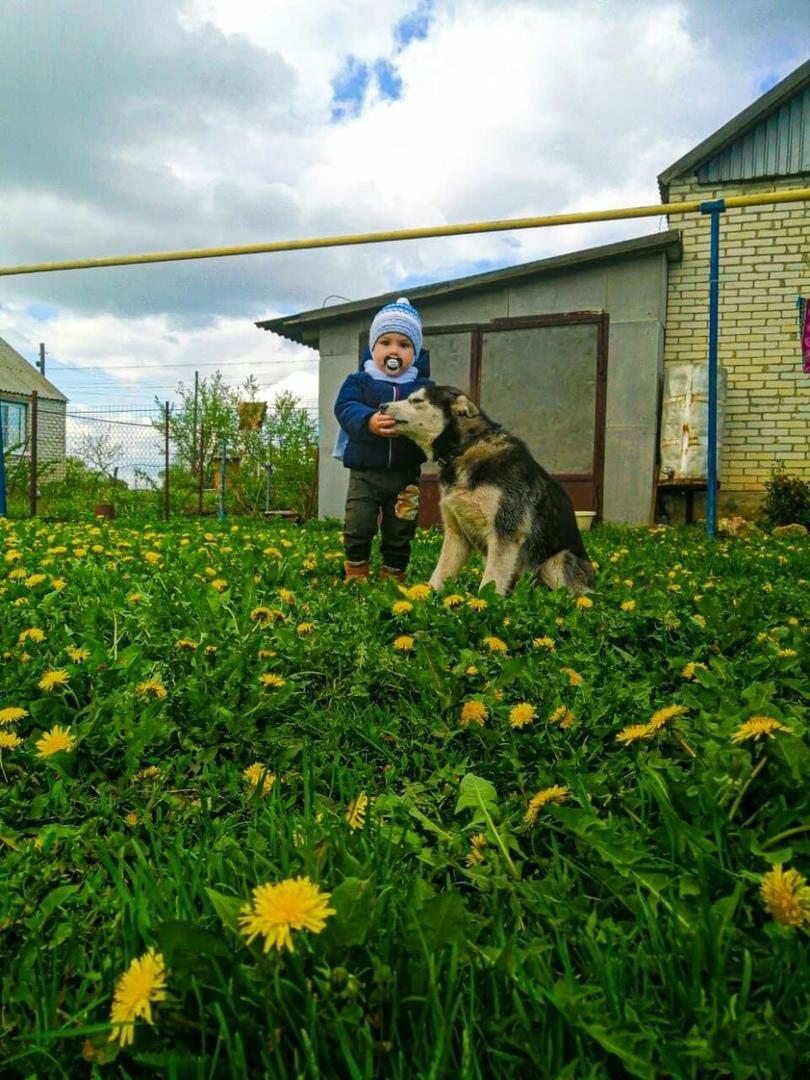 Ребята из села Таволожка стали участниками виртуальной тематической фотовыставки