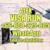 Alex Viza