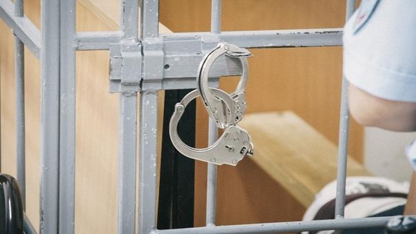 Нижегородку судят за укус росгвардейца при задержа...