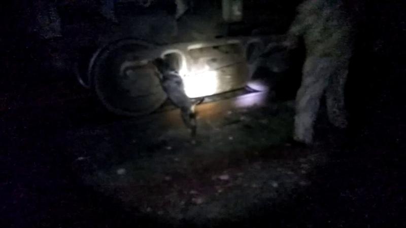 Іноземців порушників виявили прикордонники молдаванина у вагоні з вугіллям турка в авто таксі