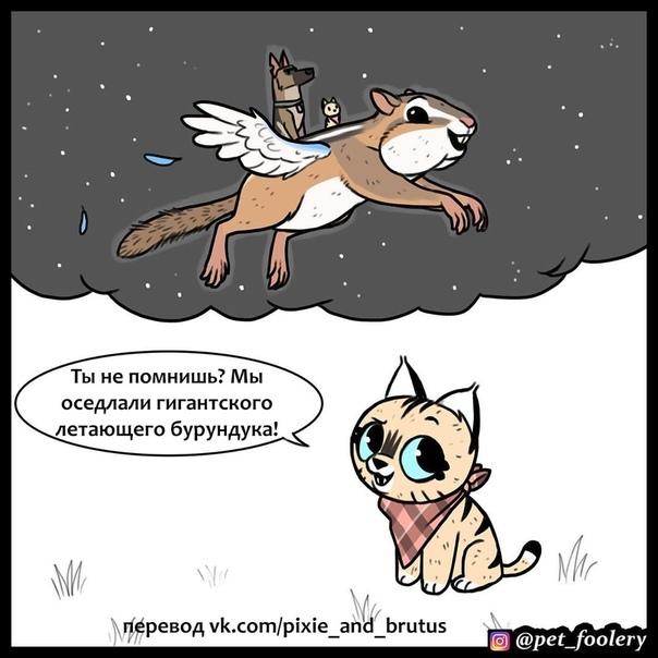 На Луне Иллюстратор: Pet Foolery