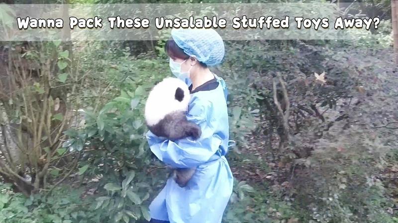 Wanna Pack These Unsalable Stuffed Toys Away | iPanda