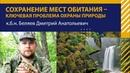 Сохранение мест обитания - ключевая проблема охраны природы. Дмитрий Беляев