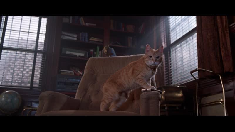 В мышиной дом кошка угодила Уиллард 2003