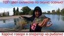 Кароче говоря я в роли оператора на рыбалке. Ловля окуня в октябре.ТОП цвет приманки на окуня осенью