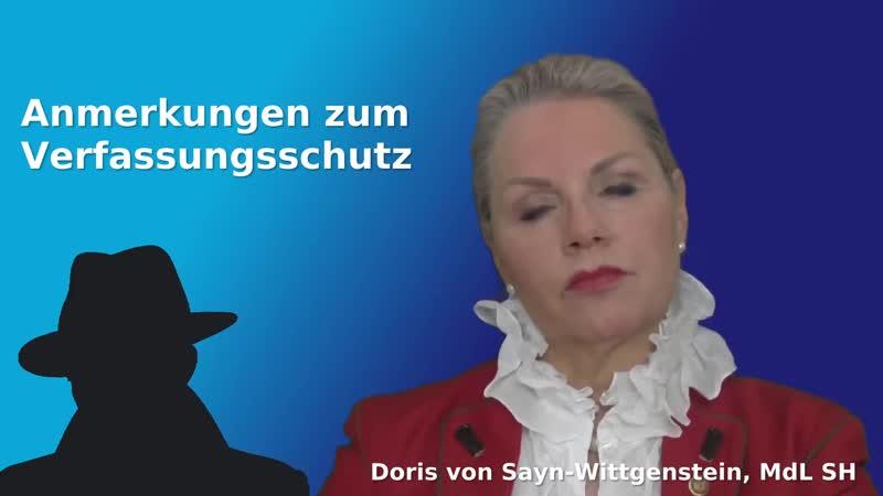 DORIS VON SAYN WITTGENSTEIN ANMERKUNGEN ZUM VERFASSUNGSSCHUTZ
