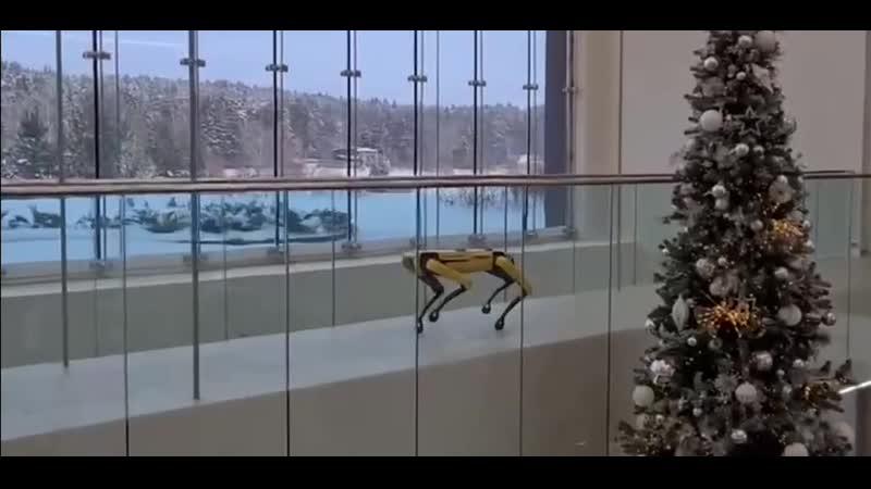 Сбер прикупил американскую собаку робота компании Boston Dynamics за 5 5 миллионов рублей