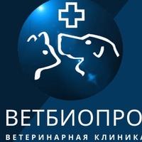 Ветеринарная-Клиника Ветбиопро
