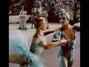 Natalia Makarova as Princess Florine and Valery Panov as the Bluebird ('Sleeping Beauty' 1964)