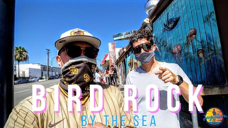 BIRD ROCK BY THE SEA Hidden Gem in La Jolla San Diego Travel Guide