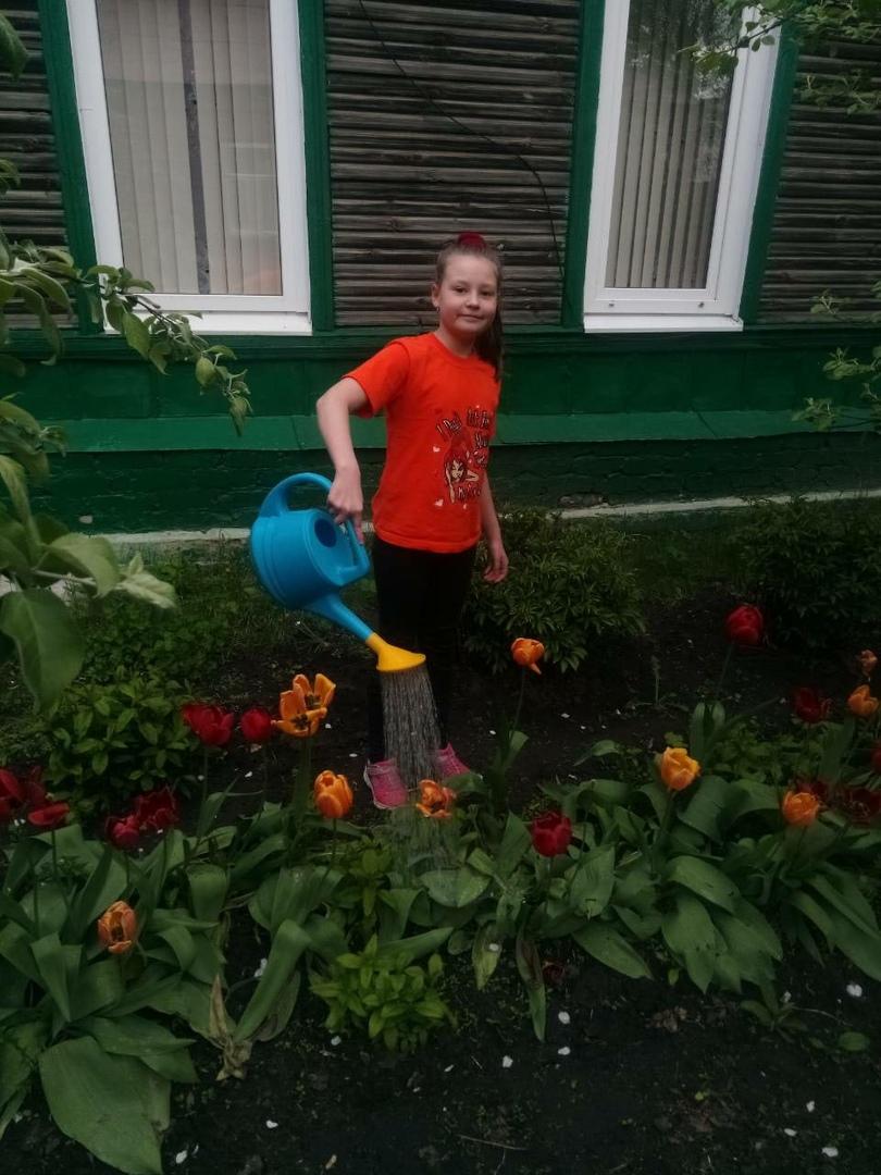Третьеклассники петровской школы №3 в рамках образовательного проекта изучают культурные и декоративные растения