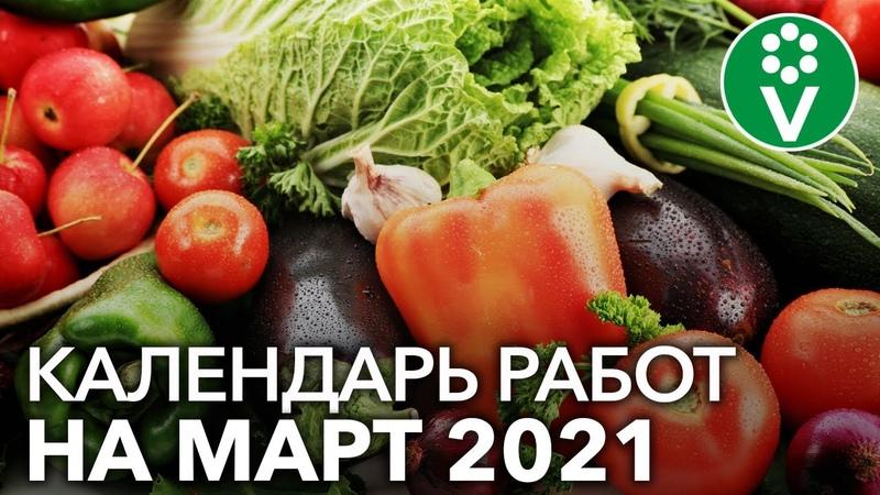 НЕ УПУСТИТЕ ВРЕМЯ Что посеять в марте 2021 г а также важные работы в саду и цветнике